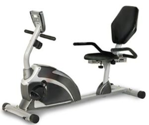 exerpeutic recumbent exercise bike